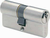 Cylindre de sécurité Iseo DX Nickelé varié